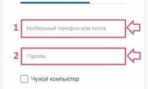 Госуслуги РФ личный кабинет